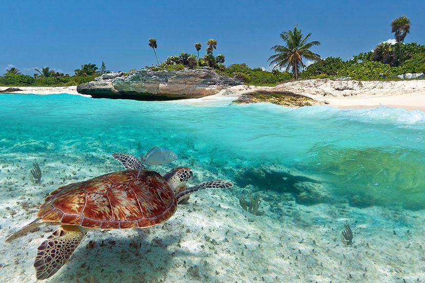 Voyage Mexique Sejour hotel Cancun sejour pas cher sejour derniere minute